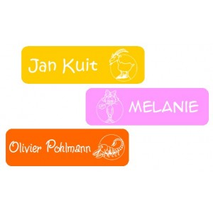 Cartoon Constellation Name Labels