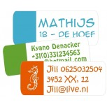 Maxi Vinyl Labels Partly Reversed 30 pcs