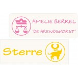 Transparent Astro Constellation Name Labels 30 pcs